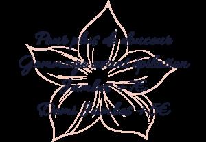 Epilations - Sainte Pazanne - Institut de Beauté - Illumine de Beauté